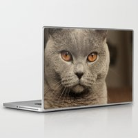 Laptop & iPad Skin featuring Diesel, the cat - (close up)  by teddynash