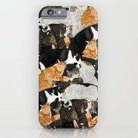 Cat Print iPhone 6 Slim Case