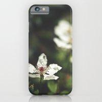 Sweet, Sweet Lies iPhone 6 Slim Case