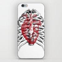Heart Bones iPhone & iPod Skin