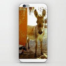 Baby Surfer Dunkeys iPhone & iPod Skin