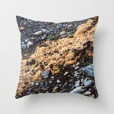 Land on the rocks Throw Pillow
