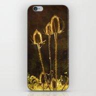 Sweet Autumn iPhone & iPod Skin