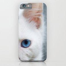 Turkısh Van Cat iPhone 6s Slim Case
