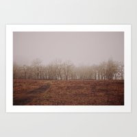 Foggy Trail to the Trees Art Print