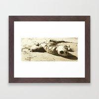 Sea Turtle Framed Art Print