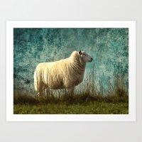 Vintage Sheep Art Print