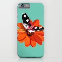 About Sex iPhone 6 Slim Case