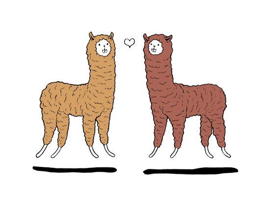 Hover Llama Lovely  Art Print