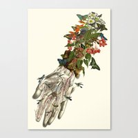 Outreached Anatomical Co… Canvas Print