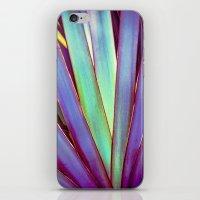 Fiesta Palm iPhone & iPod Skin