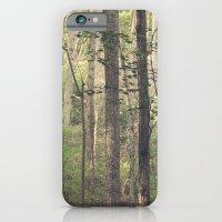 A Quiet Walk iPhone 6 Slim Case