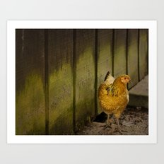 Orange chicken Art Print