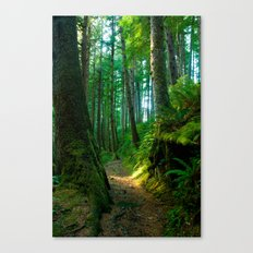 Green Pathway Canvas Print