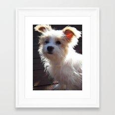 Ellie Pup Framed Art Print