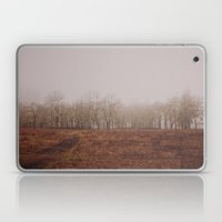 Foggy Trail to the Trees Laptop & iPad Skin