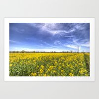 Yellow Fields Of Summer Art Print