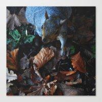 Autumn Squirrel  Canvas Print