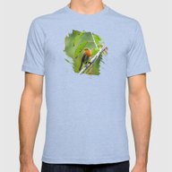 MM - Robin Redbreast Mens Fitted Tee Tri-Blue SMALL