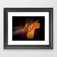 Dark Orange Framed Art Print