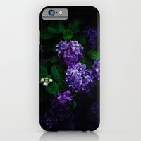 iPhone & iPod Case featuring Hydrangea 03 by noirblanc777