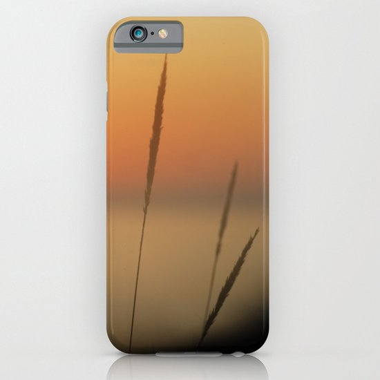 Sea ​​spikes iPhone & iPod Case