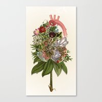 Heart In Bloom - Anatomi… Canvas Print