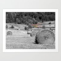 Hay  Art Print