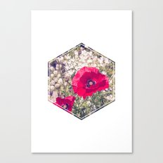 Two Red Poppies Canvas Print