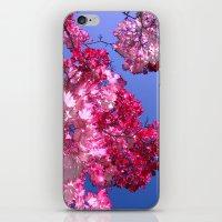 pink tree XI iPhone & iPod Skin