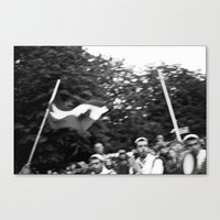 Palestinian flag Canvas Print