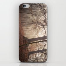Autumn Fantasy : Mist and Mistery iPhone & iPod Skin