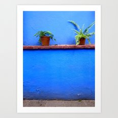 Standing sentry at La Casa Azul Art Print