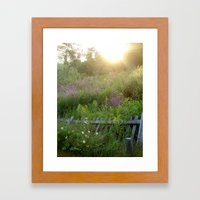 August coming undone Framed Art Print