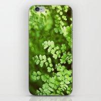 Maidenhair iPhone & iPod Skin