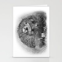 Hedgehog Stationery Cards