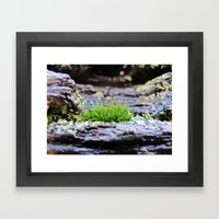 Rainforest No.5 Framed Art Print