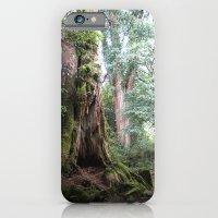Ancient Tree iPhone 6 Slim Case