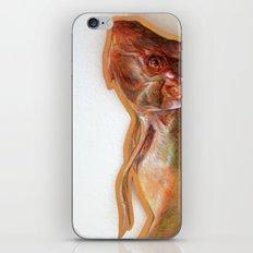 Pesce iPhone & iPod Skin