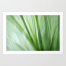 Dancing Grasses Art Print
