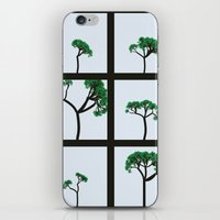 Maritime Pine iPhone & iPod Skin