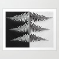 OPPOSITES LOVE - Ferns L… Art Print