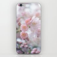 Blossoming Blossoms iPhone & iPod Skin
