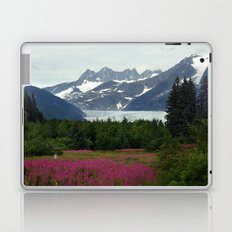 Juneau, Alaska Laptop & iPad Skin