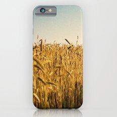 corn iPhone 6 Slim Case