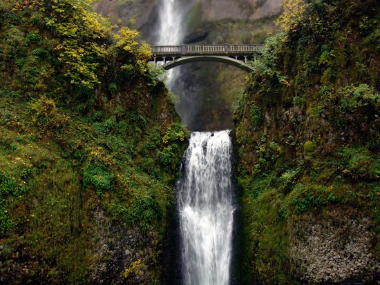 Multnomah Bridge Canvas Print