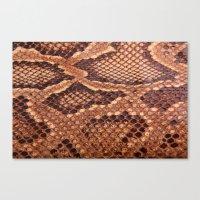 Snake Skin Texture Canvas Print