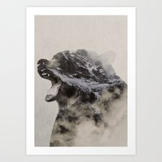 Bear In The Fog Art Print