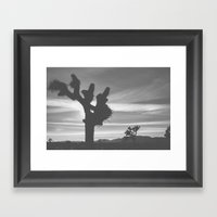 Joshua Tree Silhouettes Framed Art Print
