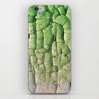 Peeling Green iPhone & iPod Skin